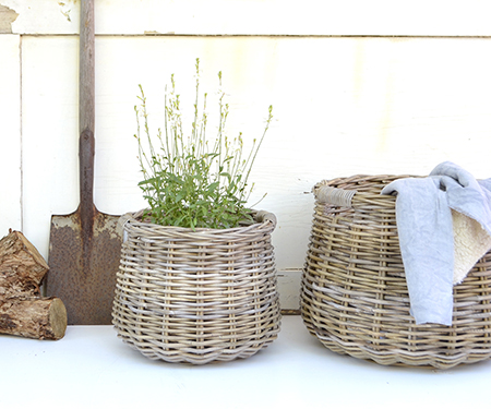 French Cane Belly Basket Small